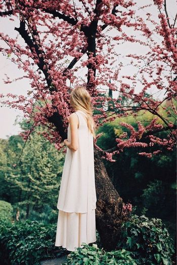 Tree One Person Rear View Full Length Nature Blond Hair Day Young Adult Leisure Activity Standing Long Hair Flower One Young Woman Only Young Women Branch Outdoors Growth Women Beauty In Nature