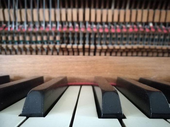 Piano Moments Keys Inside The Piano