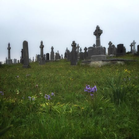 Graveyard Beauty Cemetery Grass Flowers Mobilephotography Snapseed Ireland