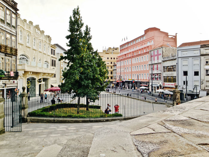 Oporto, Portugal Apartment Architecture Building Building Exterior Built Structure Car City Clear Sky Day Incidental People Land Vehicle Mode Of Transportation Motor Vehicle Nature Outdoors Plant Residential District Sky Street Transportation Tree