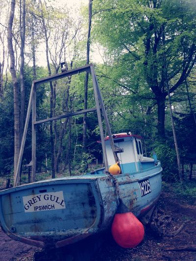 Bristol England Art Woods Boats Taking Photos Walking Around