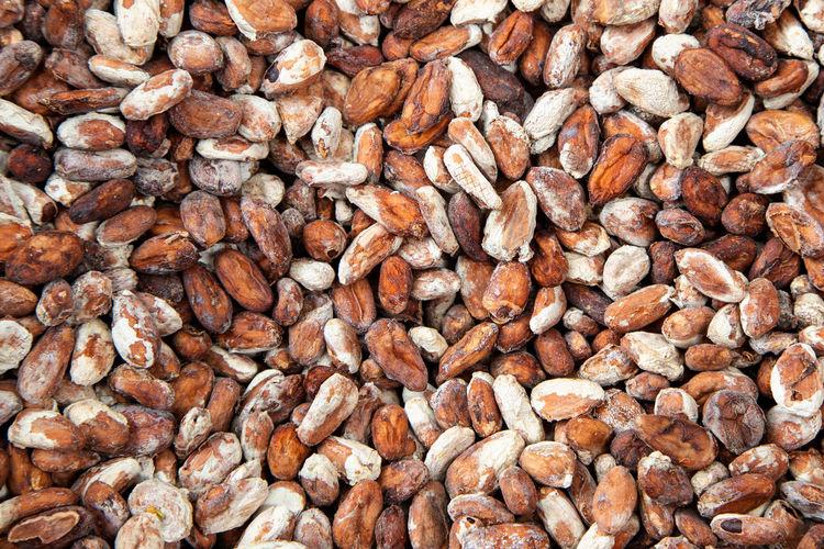 Full frame shot of cocoa seeds.
