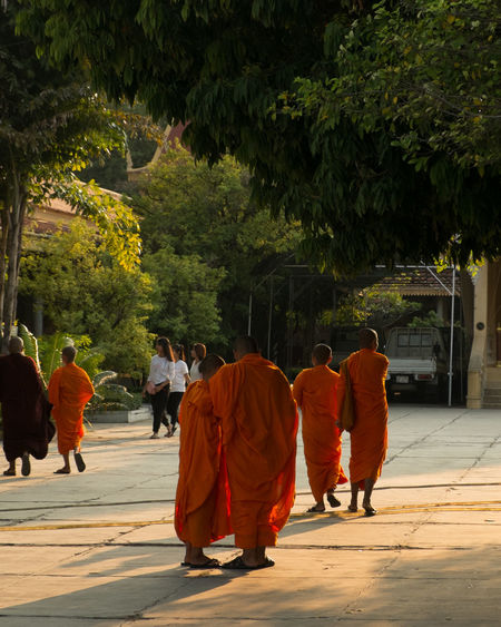 Rear view of monks walking on footpath