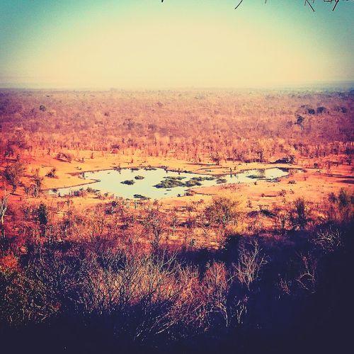 Ontheway Zimbabwe Wateringhole Safarilodge Victoriafalls