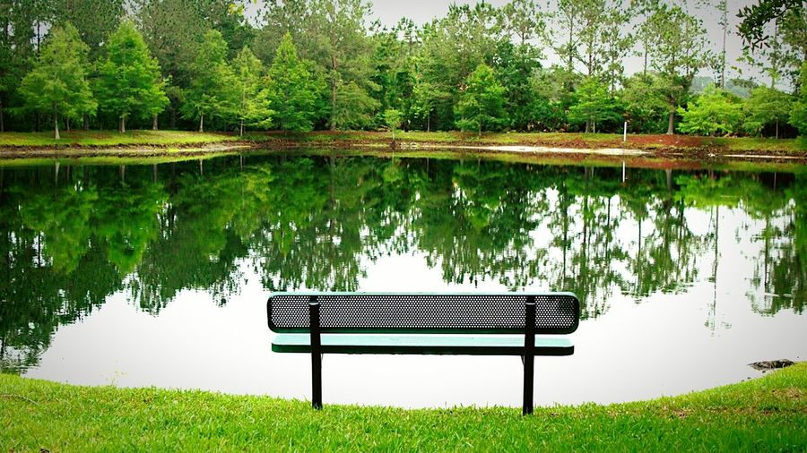Lets just chill out sit on the bench enjoy the scenery Lake Nature EyeEm EyeEmNewHere