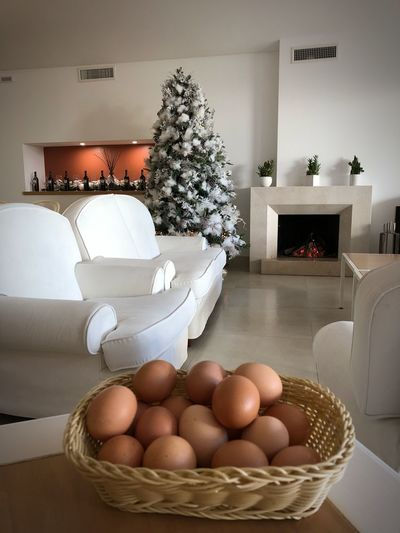 Colazione con uova prodotte dalle galline della tenuta Uova Egg Indoors  Table Home Interior Food And Drink Chair No People Egg Carton Healthy Eating Living Room Day Food Fragility Flower Freshness