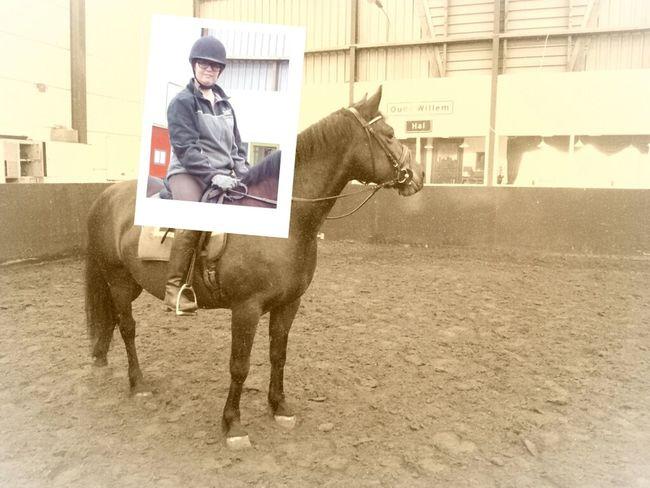 Horse Riding Pola Dream Haflo