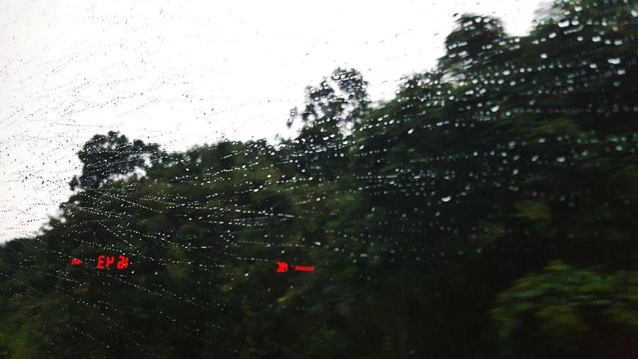 Nature Raining Day First Eyeem Photo