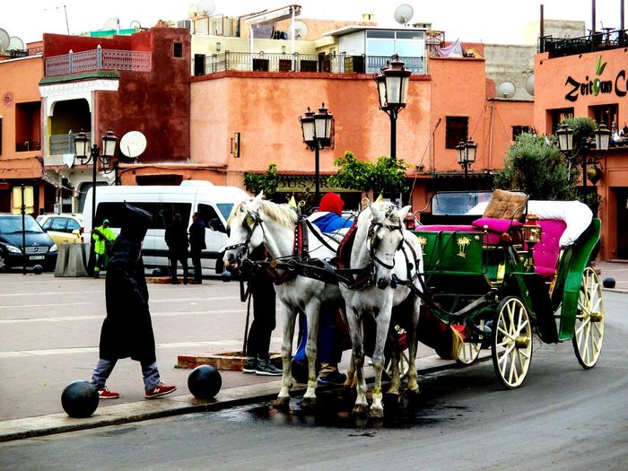 Calèche Colorful Colors Horses Marrakesh Morocco Ochre Likeit Photography Photo Beautiful Red City Tag cityscapes City Life City View  Cloud - Sky Clouds And Sky Clouds Clou