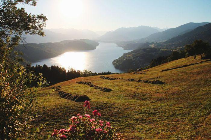 Enjoying Life @millstattersee Austria Lake View Mountain View Grassland Australian Landscape