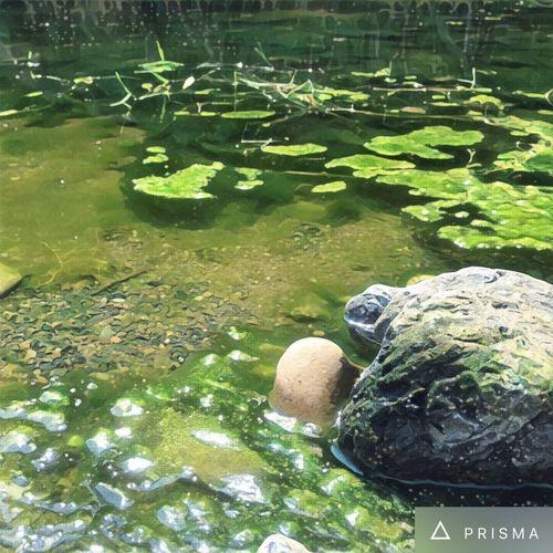 淀んでいるけど澄んでいる Snapshots Of Life Japan Chichibu EyeEm Nature Lover Iphoneonly IPhoneography Dreaming