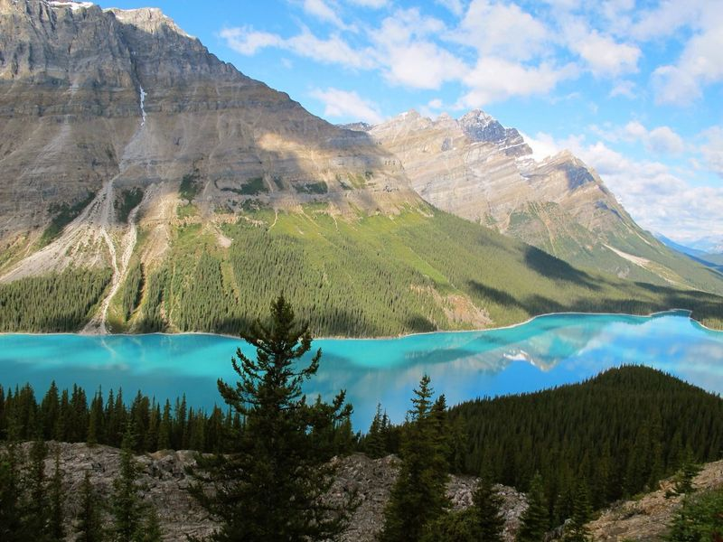 Peyto Lake Turqoise Water Breathtaking Mountain Mountain Range Landscape Scenics Tranquil Scene Tranquility Non-urban Scene Nature Beauty In Nature Remote Physical Geography Outdoors Geology Hill Day Majestic Rough The KIOMI Collection The Great Outdoors With Adobe
