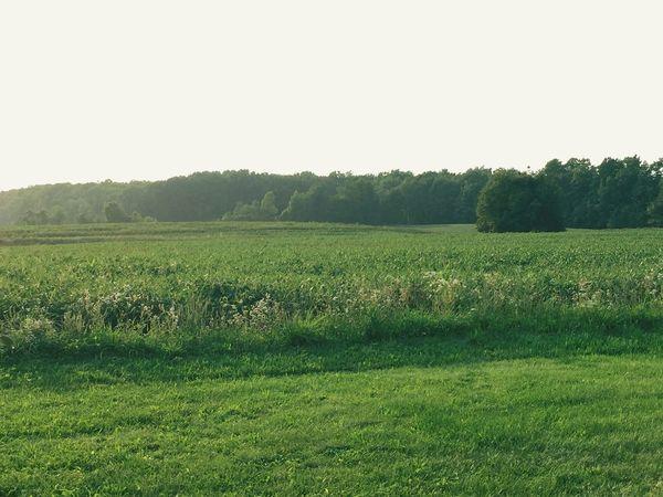 Protecting Where We Play Simple Country Life Nature Beautiful Nature Pure Michigan My Back Yard Enjoying Life