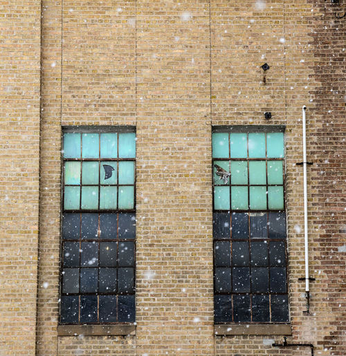 Full frame shot of window on wall of abandoned building