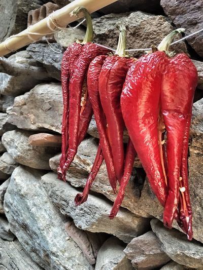 Red Pepper Redpepper Dried Driedfood Food Hanged Nobody Fresh Peppers Peppers Vivid Turkish