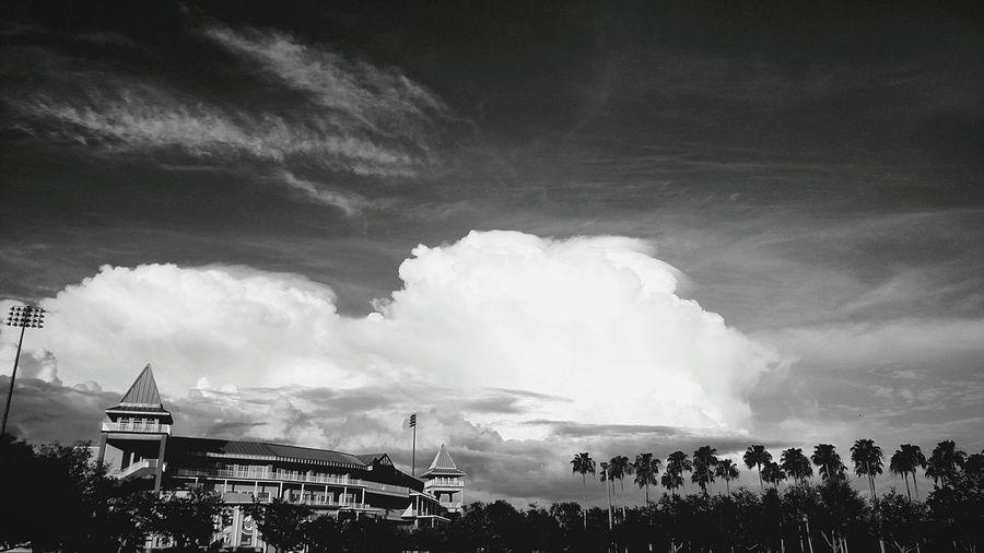 Tree Water Sky Storm Cloud Cloud - Sky Dramatic Sky Cloudscape Meteorology Atmospheric Mood