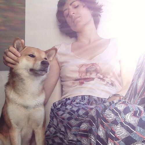 Glitch Shiba Inu Oh Sunny Day Selfportrait