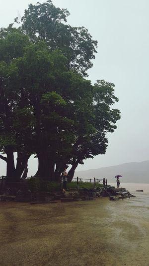 rainy day under