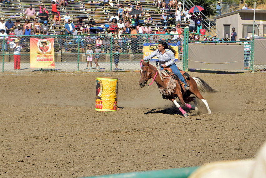 Ladies Barrel Racing 3 Cowgirls Rowell Ranch Hayward, Ca. Bill Pickett Invitational Rodeo Ladies Barrel Racing Test Of Speed & Skill Timed Event Equestrian Sport Rodeo Exhibition Bill Pickett Born 1870 Jenks-Branch,Texas Cowboy Rodeo Legend ProRodeo Hall Of Fame Wild West Shows 33rd Anniversary National Touring Rodeo Competition Horses Professional Rodeo Cowboys Association Teamwork Riders & Their Horses Agility Spirit