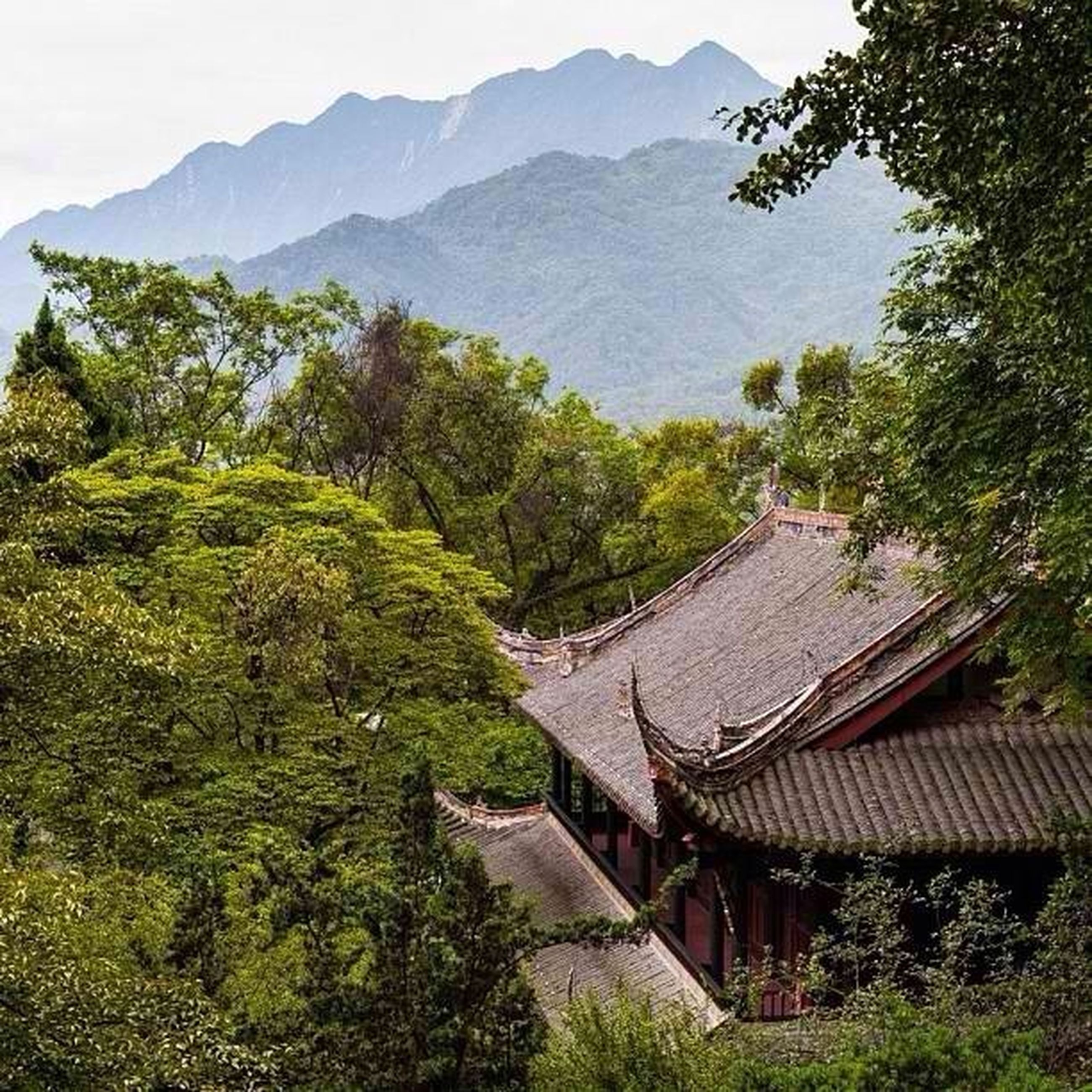 mountain, tree, house, built structure, tranquility, tranquil scene, scenics, landscape, architecture, building exterior, mountain range, nature, green color, roof, beauty in nature, high angle view, growth, hill, non-urban scene, sky