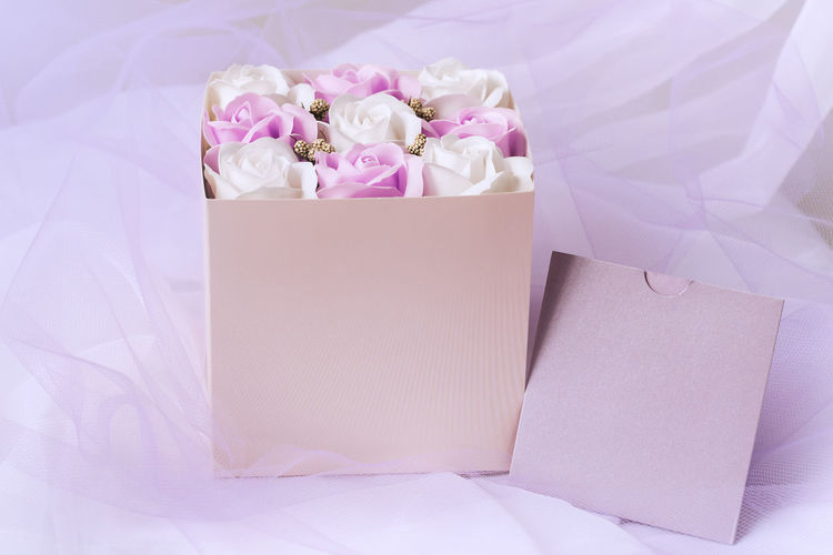 High angle view of pink and white flower on bed