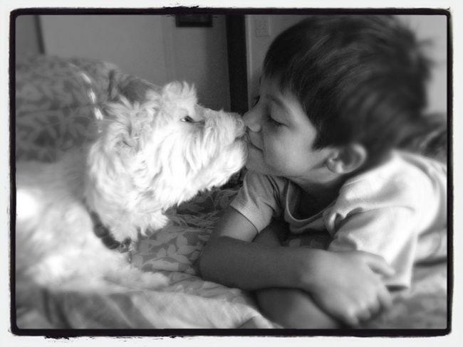 good morning Dog Kiss Me