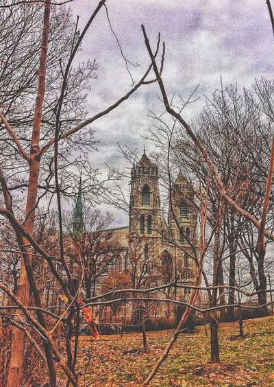 Cathedral Basilica of the Sacred Heart. Newark, NJ. Architecture Bare Tree Built Structure Building Exterior Church Religion Tree Fence Sky Place Of Worship History Cloud - Sky Outdoors Branch Travel Destinations Day Cathedral New Jersey Newark EyeEm Catholic Basilica