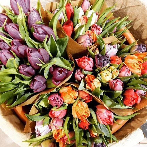 Spring is in the air🌂 Springiscoming Spring Goodwineua Tulips Spring Тюльпаны цветы весна веснаужеблизко Springisintheair Flowers Goodwine БукетЦветов букет красота Beauty Rosesarered Violetsareblue