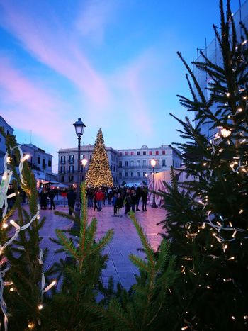#Nataleincittà #Christmas #christmastime #ChristmasLights #christmas #tree #december #family #traditions #cold #winter #ChristmasTree #christmas 2017 #christmasdecorations #tree #people #City #life #sky Christmas Lights Dusk Architecture Christmas Market Cityscape Ferris Wheel City Outdoors Sky No People