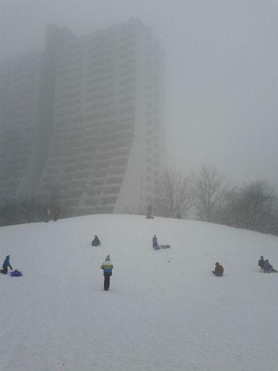 rodeln Fog Snow