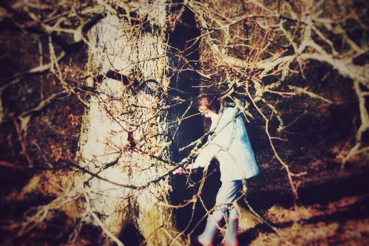 Child's play Tree Tree Trunk Branches WoodLand Forest Outdoor Photography Daughter Childhood Vintagetone Warmcolours Edits Nikon