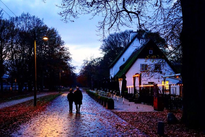 Late Evening Late Evening Sky People Silhouette Silhouettes House Architecture Outdoors Park Electric Light Electric Pole Sunset Lifestyles Cold Temperature Autumn Autumn Scene Autumn Atmosphere Autumn Colors EyeEm Nature Cosy Evening  Cosy Light