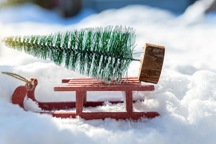 Close-up of snow on table during winter