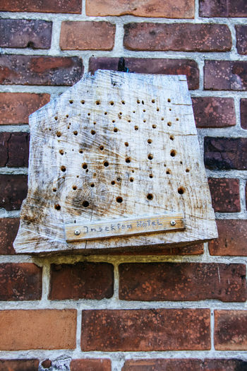 Insect Hotel Red Brick Wall APIculture Architecture Bee Beehive Brick Wall Bricks Building Exterior Built Structure Close-up Day Honeycomb Insect Photography Insects  No People Outdoors