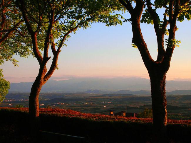 Landscape in Spein