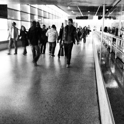 #architecture #Berlin #igersberlin #instagood #tweegram #photooftheday #follow #instamod #igers #picoftheday #instragamhub #instadaily #insta_germany #bestoftheday #igdaily #webstagram #instragramers #ig_special #igersberlin #gf_germany #all_shots #bw #bl All_shots Bestoftheday Igers IGDaily Tweegram Instagood Webstagram Instadaily Architecture Igersberlin Walk Insta_germany Berlin Gf_germany Blackandwhite Instragramers Bw Ig_special Photooftheday Instragamhub Picoftheday Instamod Follow