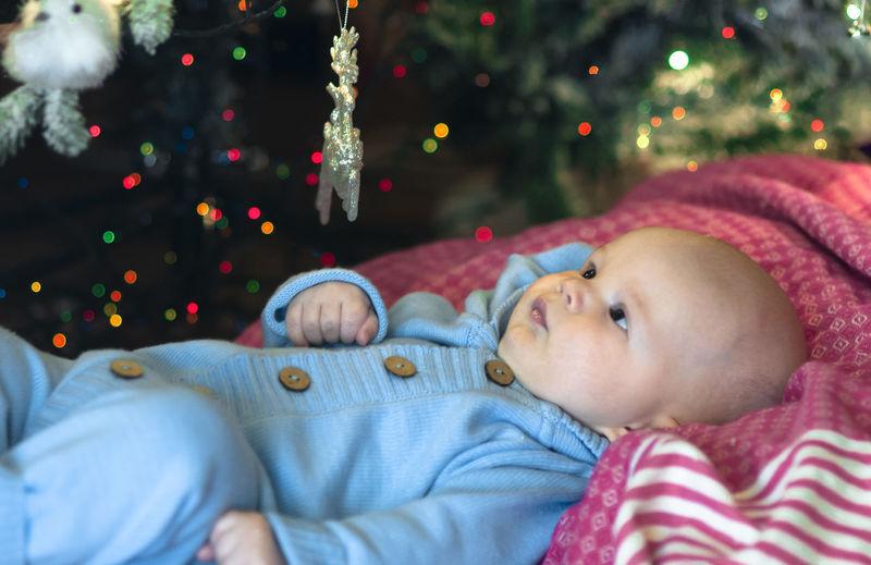 Portrait of cute girl lying on christmas tree