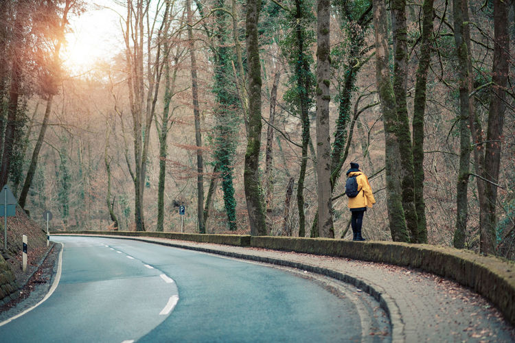 Rear view of person walking on retaining wall by roadside at forest