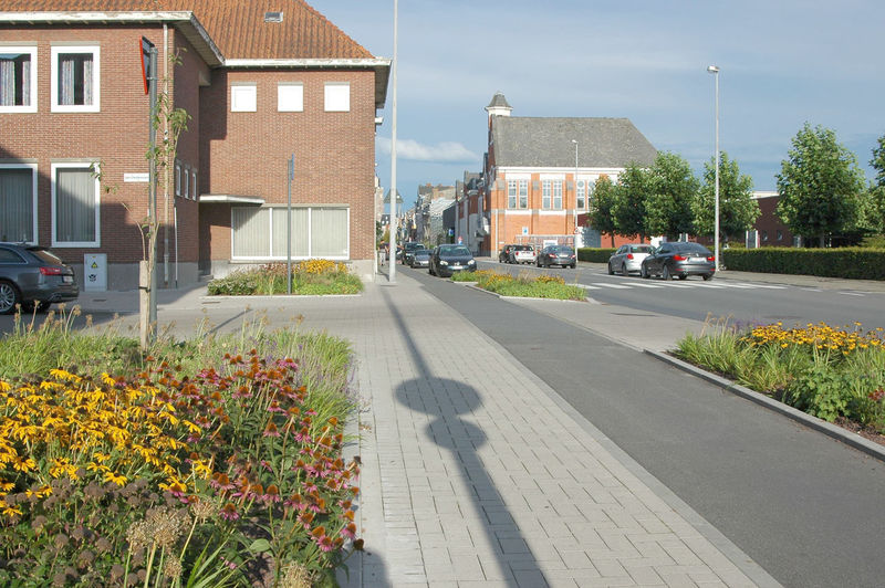 Dendermonde Architecture Building Exterior Built Structure Car City Cycle Track Day Flower Nature No People Outdoors Raised Pavement Residential Building Road Sky Tree