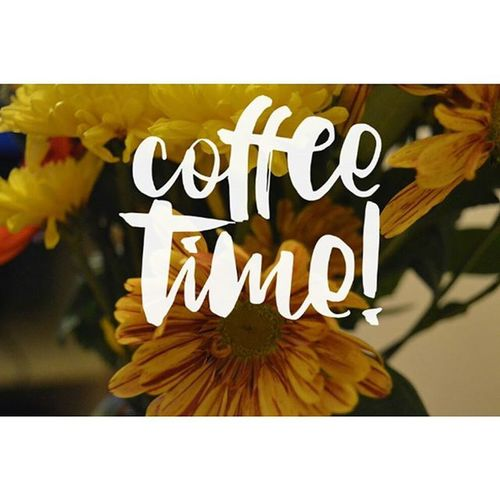 (Made withFontover )App from@caesarapp good morning Coffee Flowers Morning s Summer My Own Photography Ownphotos