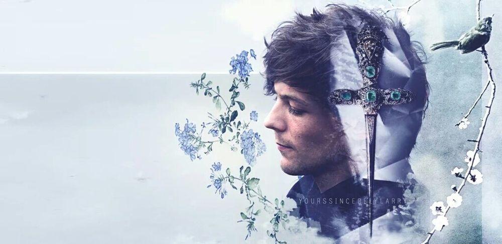 Onedirection One Direction Louistomlinson Louis Tomlinson