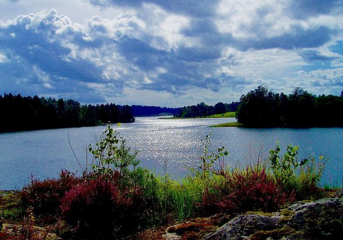 Landscapes With WhiteWall Sweden Beautiful Nature Land Of My Dreams Woderful_places First Eyeem Photo Nature Photography Naturephotography Color Explosion