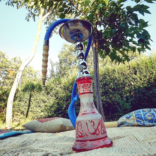Narghile Summer Memories Oasis Peace And Love ✌❤ Friends Chillout Lounge Smoking Hookah Open Air Camping Nature