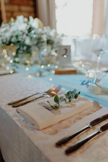 Plants in plate on table