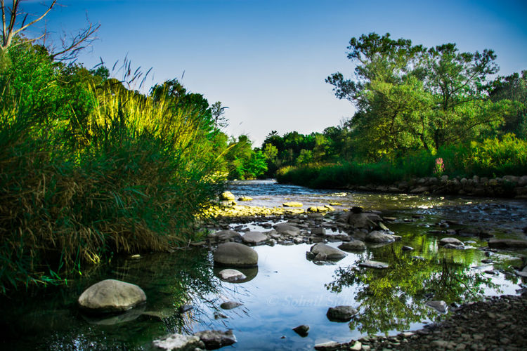 River Reflection Grass Landscape Photography Nature Photography Skyline Water Stream Beauty In Nature Day Growth Lake Landscape Nature Nature Beauty Nature Landscape No People Outdoors River Rock - Object Rocks And Water Scenics Sky Tranquil Scene Tranquility Tree Tree Reflection  Water