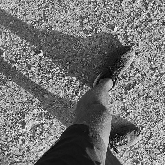 stomping stones. Running Utah Wasatch County