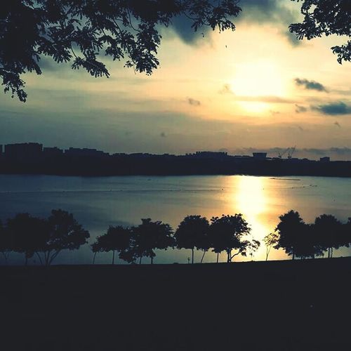 Singapore Bedokreservoir Park Sunrise