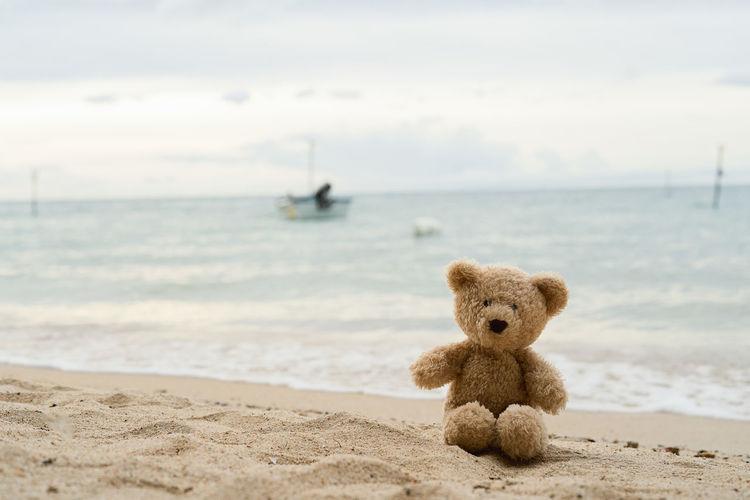 Teddy bear on shore against sea at beach