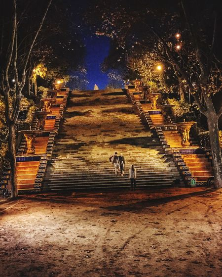 Stairs at night Eyeem Colors Eyeem Architecture Staircase Steps And Staircases Night The Way Forward Illuminated Full Length Architecture Outdoors Tree