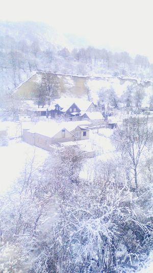 Winter Day Snow Cold Temperature No People First Eyeem Photo